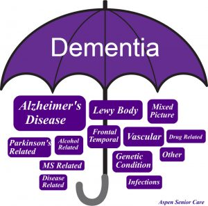 Dementia is the term used to describe several different diseases of the brain which affect memory, language, and more.